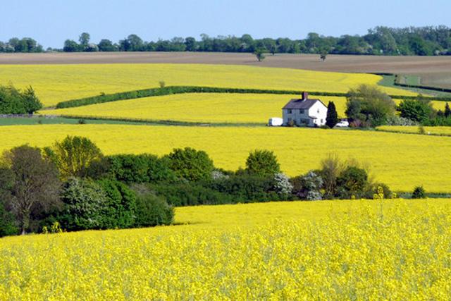 Dating sites hertfordshire